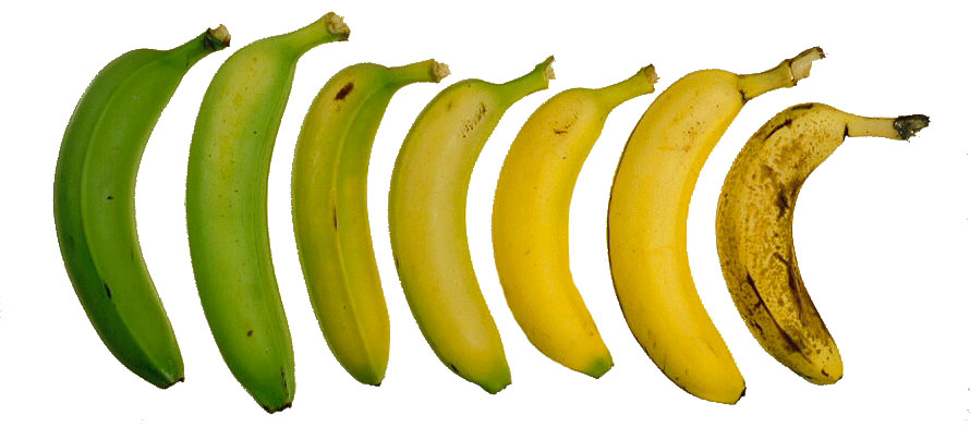 How Ripe Do You Like Your Software?